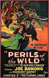 <i>Perils of the Wild</i> 1925 film by Francis Ford