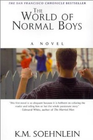 The World of Normal Boys - Image: The world of normal boys book