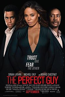 The Perfect Guy full movie (2015)