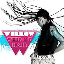 Whip My Hair Single Cover.jpg