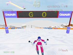 Alpine Racer - Screenshot of the start of a Novice race