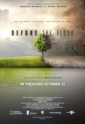 Before the Flood (film) - Theatrical release poster