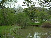With a lake and a conservation area on campus, Waterloo is home to a variety of vegetation and wildlife.