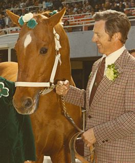 Silky Sullivan American-bred Thoroughbred racehorse