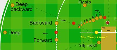 map of a cricket field showing the fielding position, the silly-point