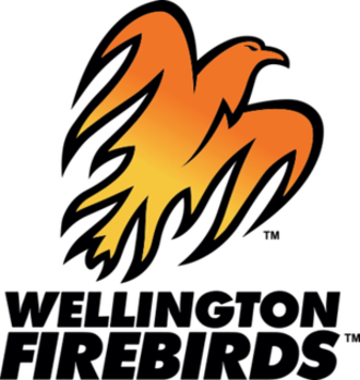 Wellington cricket team - Image: Wellington Firebirds logo