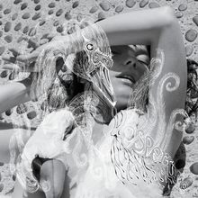 Björk - Vespertine album cover.png