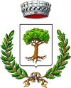 Coat of arms of Borgo San Martino