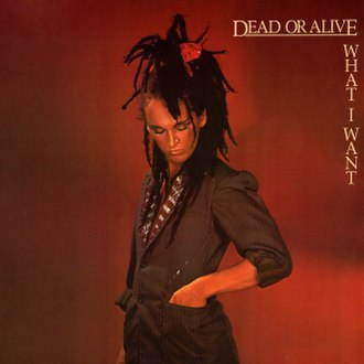 What I Want (Dead or Alive song) - Image: Dead Or Alive What I Want 250409 991