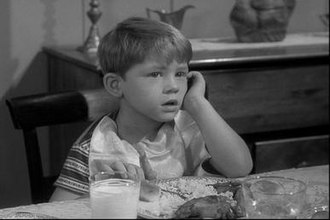 "Opie Taylor - Opie's first series appearance, ""The New Housekeeper"" (1960)."