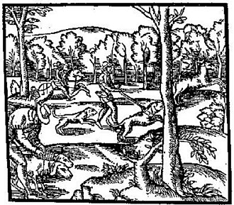 Hart (deer) - Hunting the Hart, a picture from Turbervile, copied from La Venerie de Jaques du Fouilloux, 16th century