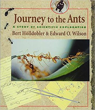 Journey to the Ants - Cover of the first edition