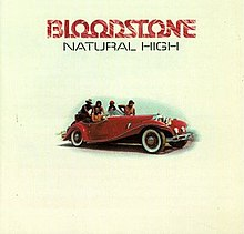 Natural High Bloodstone.jpg