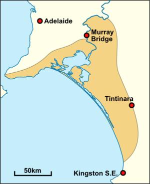Ngarrindjeri - Approximate historical extent of Ngarrindjeri territory.