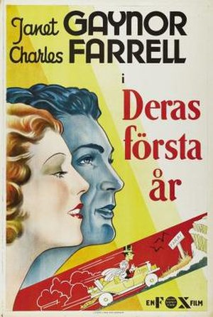 The First Year - Swedish poster
