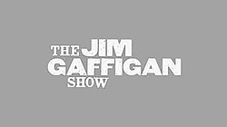 The Jim Gaffigan Show