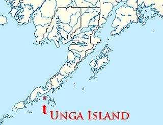 Unga Island island in the United States of America