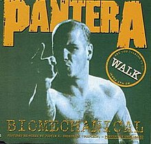 Walk Biomechanical Front Cover.jpg