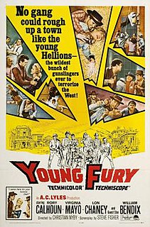 <i>Young Fury</i> 1965 film by Christian Nyby