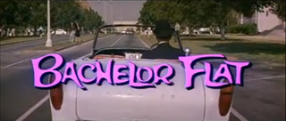 <i>Bachelor Flat</i> 1962 film by Frank Tashlin