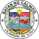 Official seal of Calinog