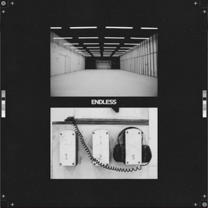 Endless (Frank Ocean album) - Image: Frankoceanendlessart