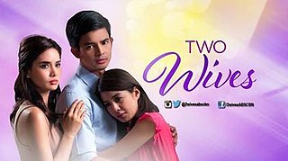 <i>Two Wives</i> (2014 TV series)