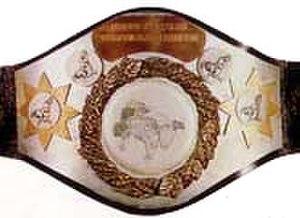 WWF North American Heavyweight Championship - The North American Heavyweight Championship belt.