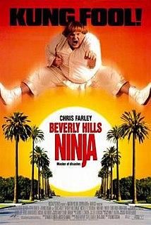 <i>Beverly Hills Ninja</i> 1997 American martial arts comedy film