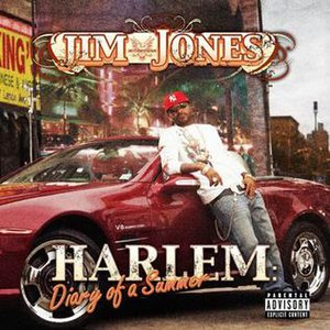 Harlem: Diary of a Summer - Image: Diary of a summer