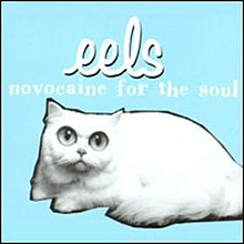Eels-NovocaineForTheSoul.jpg