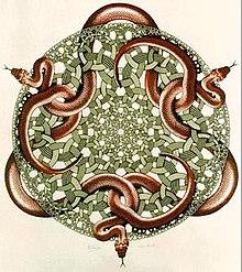 15f64502d Escher's last work, Snakes, 1969