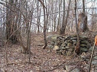 Hanton City, Rhode Island - The remains of a stone wall at Hanton City, with surveyor's tape