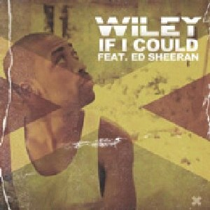 If I Could (Wiley song) - Image: If I Could (Wiley single cover art)