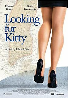 Looking for kitty poster.jpg