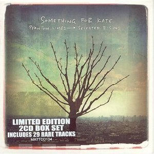 Phantom Limbs: Selected B-Sides - Image: Phantom Limbs Selected B Sides cover