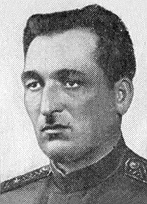 354th Rifle Division (Soviet Union) - Maj. Gen. Vladimir Dzhandzhgava, Hero of the Soviet Union