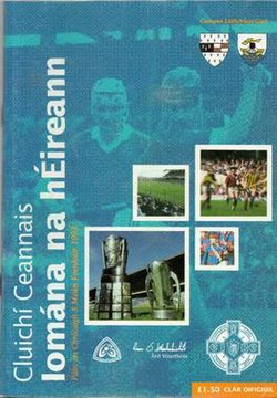 1993 All-Ireland Senior Hurling Championship Final P.jpg