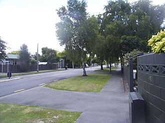 Redwood, Christchurch - Redwood, Christchurch in early summer