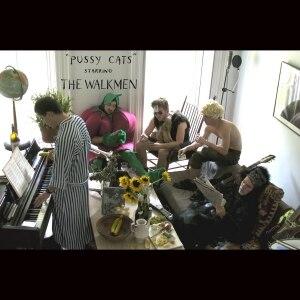 """Pussy Cats"" Starring the Walkmen - Image: Walkmen Pussy Cats"