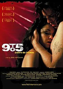 9to5 - Days in Porn theatrical poster.jpg