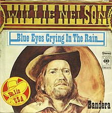 Blue Eyes Crying in the Rain - Willie Nelson.jpg