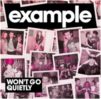 Won't Go Quietly (song) - Image: Example Wont Go Quietly
