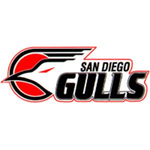 San Diego Gulls (1990–95) - IHL San Diego Gulls logo