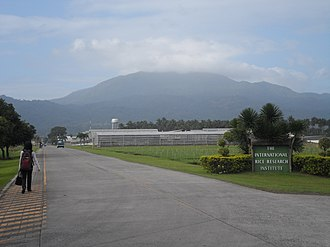 International Rice Research Institute - Entrance to the IRRI Headquarters at Los Baños, Laguna with Mt. Makiling in the background.