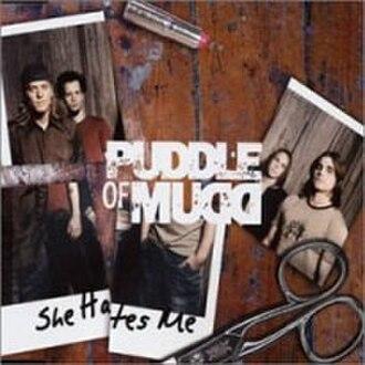 She Hates Me - Image: Puddle of mudd she hates me