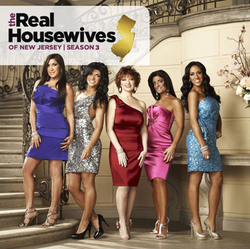 Real Housewives Of New Jersey Wikipedia 81