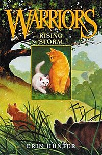 The cover of Rising Storm.