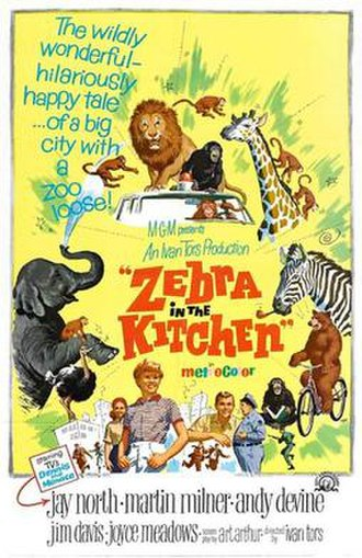 Zebra in the Kitchen - Theatrical release poster