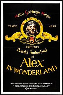 Alex in Wonderland FilmPoster.jpeg